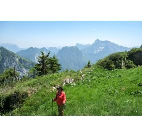 Panorama dal Buscada verso la Val Vajont e l'Alpago
