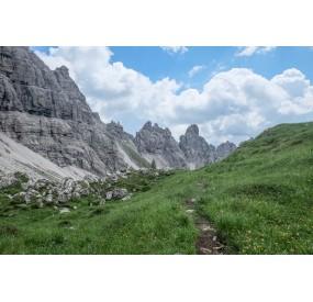 The pioneer grassland in the high Monfalconi di Cimoliana valley