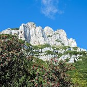 the eastern ramparts of the Borgà  #vistdolomiti #dolomiti #dolomites #unesco #unescoworldheritage #dolomitifriulane #mountains #mountainlovers #montagna #landscape #landscapephotography #paesaggio #nature #natura #fvg #hiking #escursione